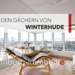 ueber-den-daecher-von-winterhude-1024x683